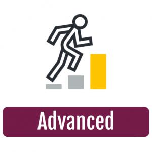 L3 - Advanced
